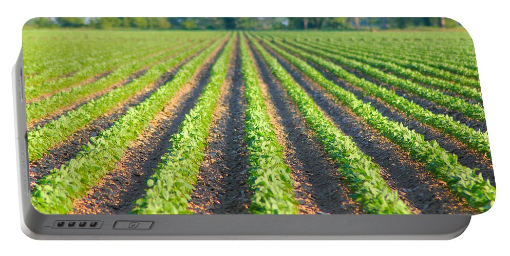 Soybeans Portable Battery Charger featuring the photograph Agriculture-soybeans 5 by Karen Wagner