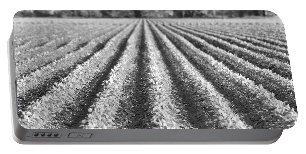 Crops Portable Battery Charger featuring the photograph Agriculture-soybeans 6 by Karen Wagner