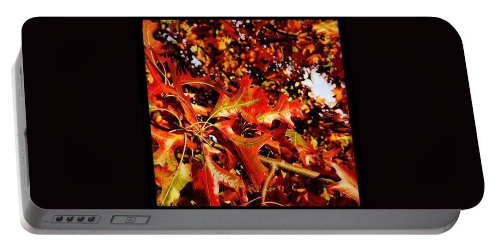 Portable Battery Charger featuring the photograph Ahhh Fall. by Mark Valentine
