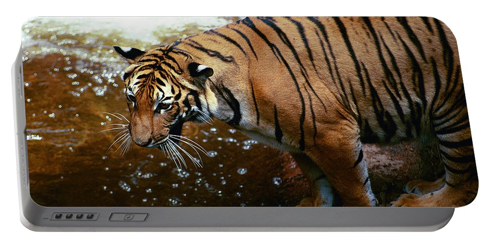 Portable Battery Charger featuring the photograph Ahhh by Michael Frank Jr