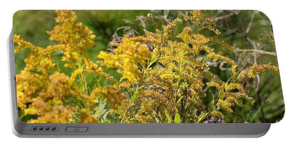 Alabama Goldenrod Portable Battery Charger featuring the photograph Alabama Goldenrod by Maria Urso