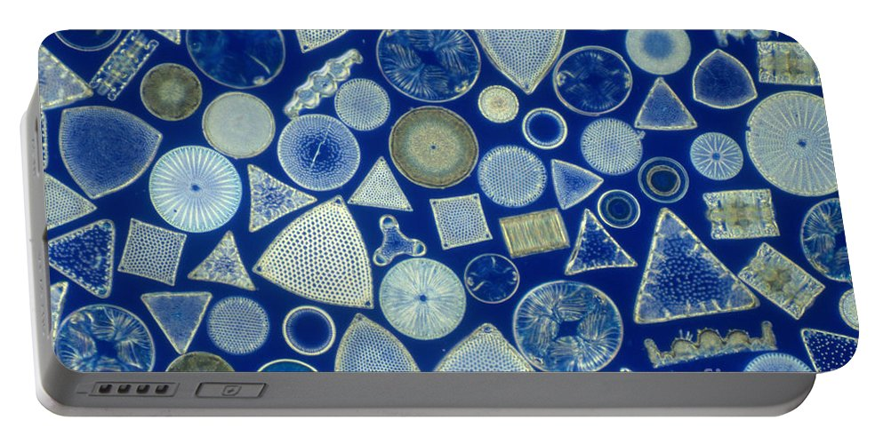Micrograph Portable Battery Charger featuring the photograph Algae, Fossil Diatoms, Lm by M I Walker