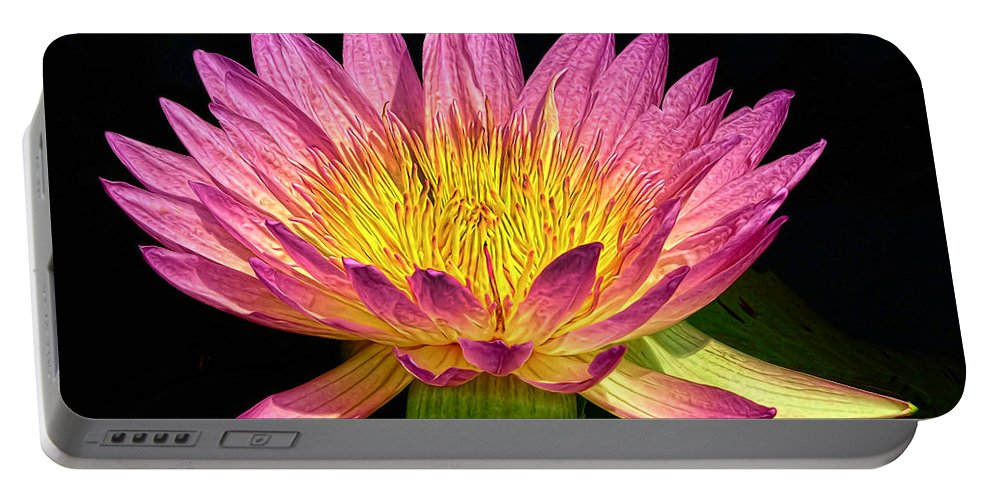 Waterlily Portable Battery Charger featuring the photograph Alive With Color by Dave Mills