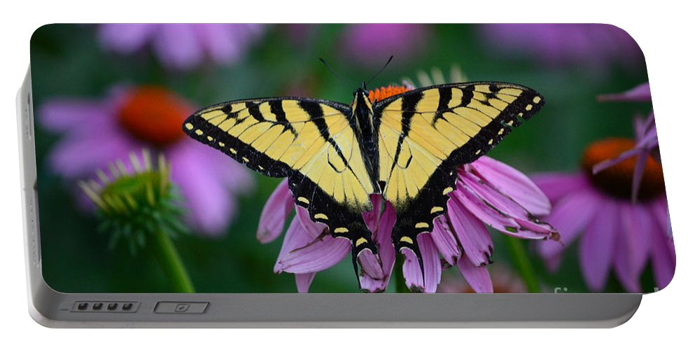 Color Photography Portable Battery Charger featuring the photograph All Fanned Out by Sue Stefanowicz