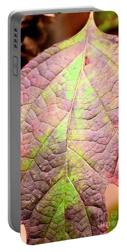 Autumn Portable Battery Charger featuring the photograph An Autumn's Leaf by Maria Urso
