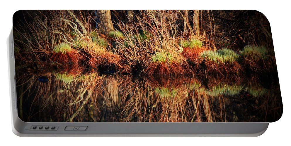 Pond Portable Battery Charger featuring the photograph April's Pond by Karol Livote