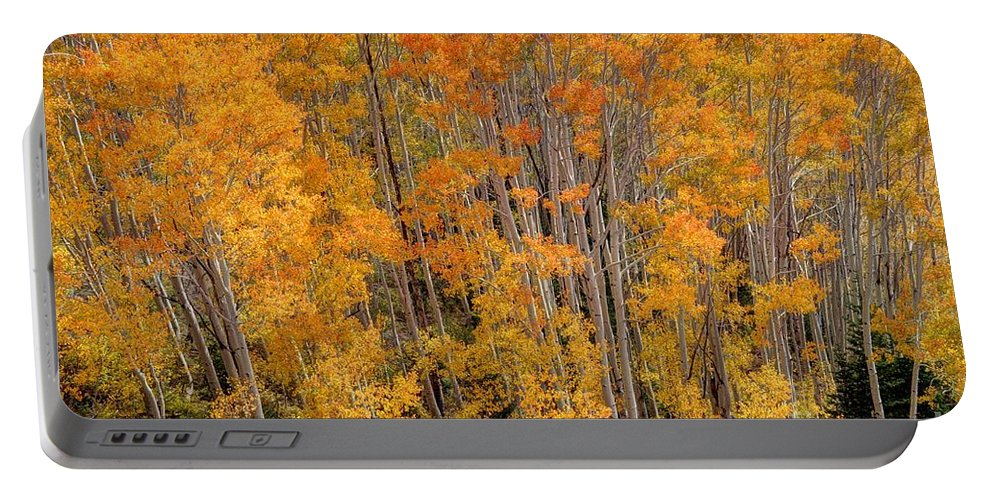 Aspen Portable Battery Charger featuring the photograph Aspen Forest In Fall - Wasatch Mountains - Utah by Gary Whitton