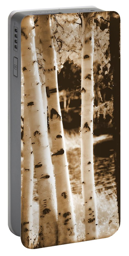 Chena Portable Battery Charger featuring the photograph Aspens Llll by Kathy Sampson