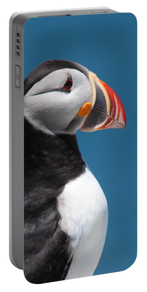 Puffin Portable Battery Charger featuring the photograph Atlantic Puffin by Bruce J Robinson