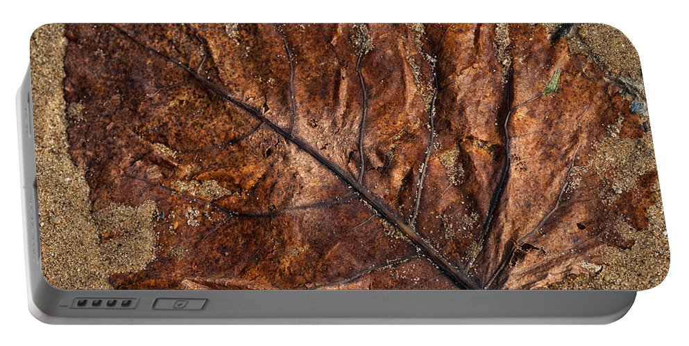 Leaf Portable Battery Charger featuring the photograph Atres 1 by Karol Livote