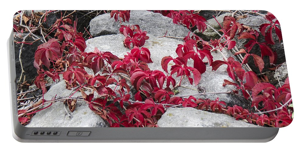 Red Portable Battery Charger featuring the photograph Autumn Color Is Red by Darleen Stry