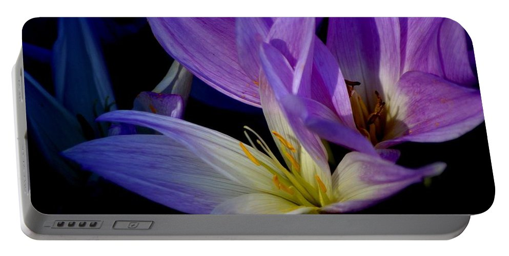 Floral Portable Battery Charger featuring the photograph Autumn Crocus by Living Color Photography Lorraine Lynch