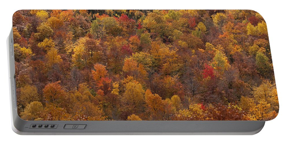 Fall Autumn Colours Colors Rust Orange Yellow Landscape Quebec mont Ste Marie Portable Battery Charger featuring the photograph Autumn Palette by Eunice Gibb