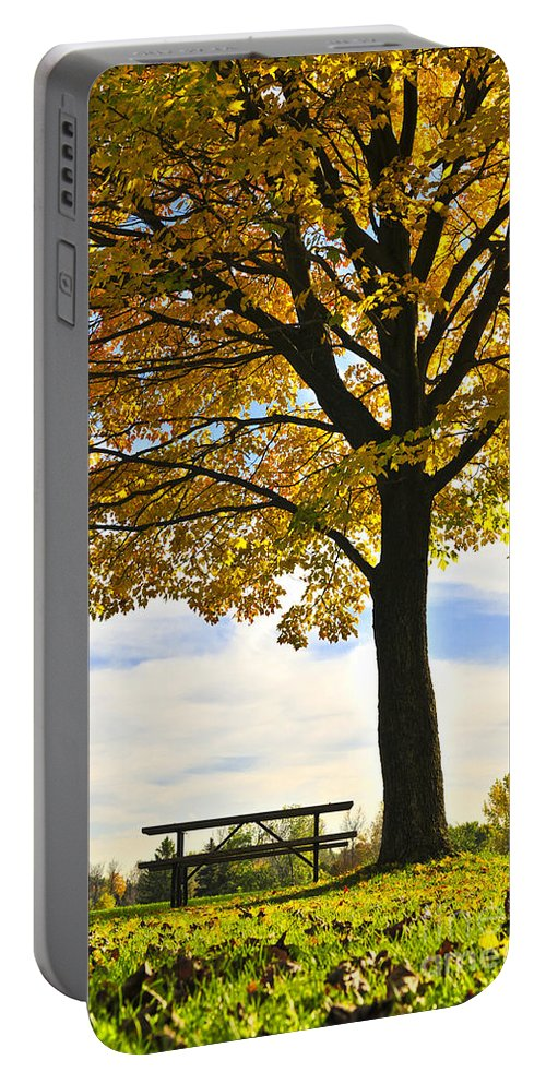 Fall Portable Battery Charger featuring the photograph Autumn Park by Elena Elisseeva