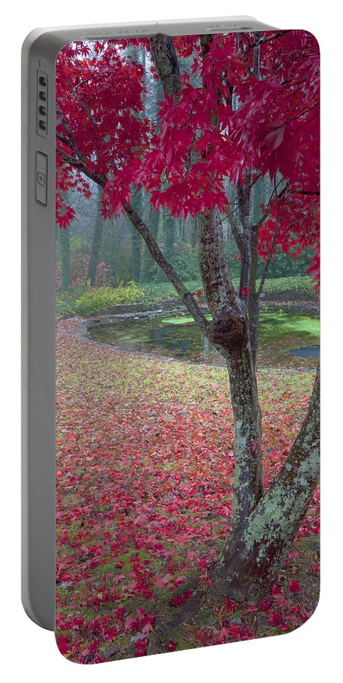 Red Photographs Portable Battery Charger featuring the photograph Autumn Red by Rob Travis