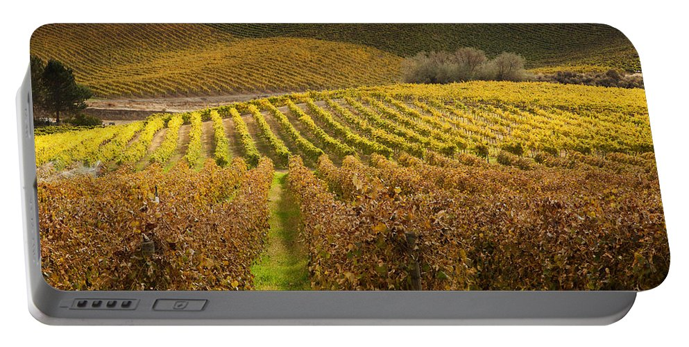 Grapevines Portable Battery Charger featuring the photograph Autumn Vines by Mike Dawson