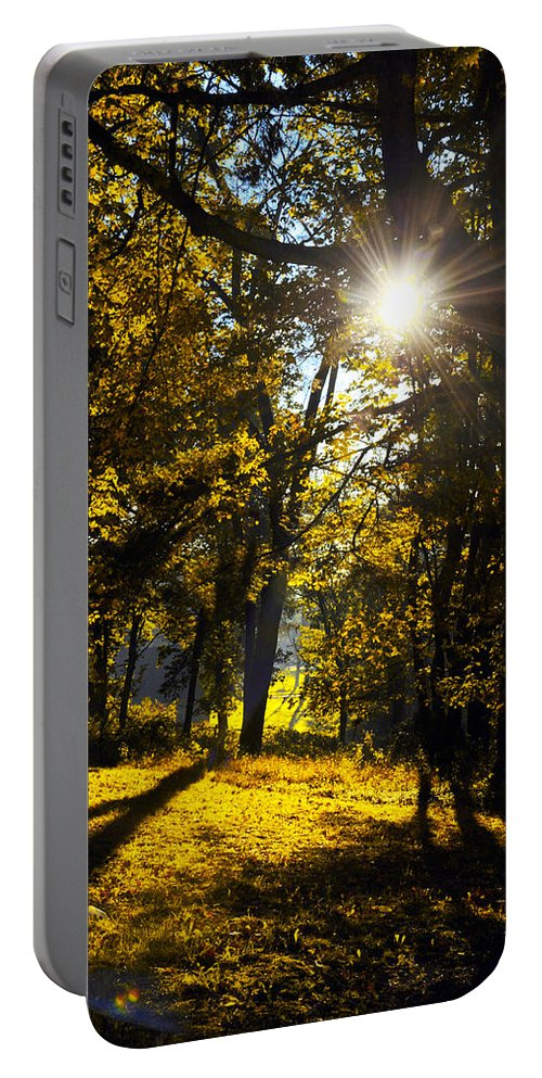 Autumn Portable Battery Charger featuring the photograph Autumnal Morning by Bill Cannon