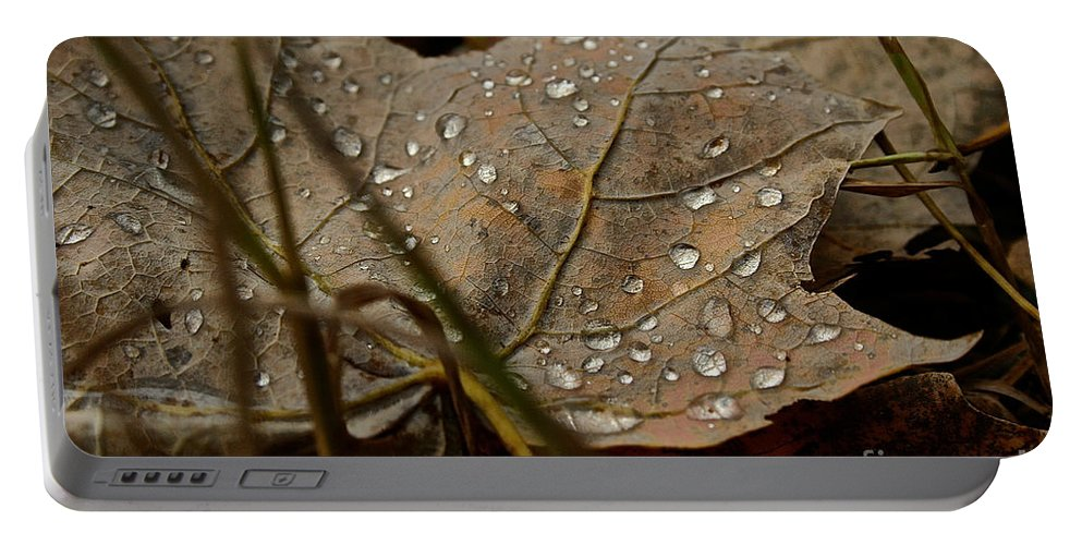 Landscape Portable Battery Charger featuring the photograph Autumn's Soul by Susan Herber