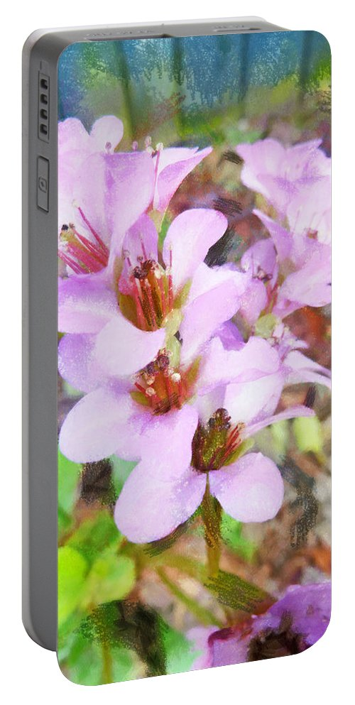 Pink Portable Battery Charger featuring the photograph Backyard Blooms by Steve Taylor
