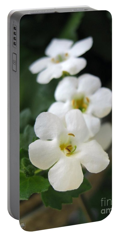 Bacopa Portable Battery Charger featuring the photograph Bacopa Named Snowtopia by J McCombie