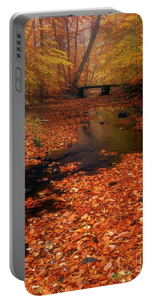 Bamboo Brook Portable Battery Charger featuring the photograph Bamboo Brook Chester New Jersey by Dave Mills