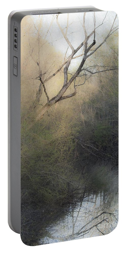 Tree Portable Battery Charger featuring the mixed media Barren Beauty by Kim Henderson