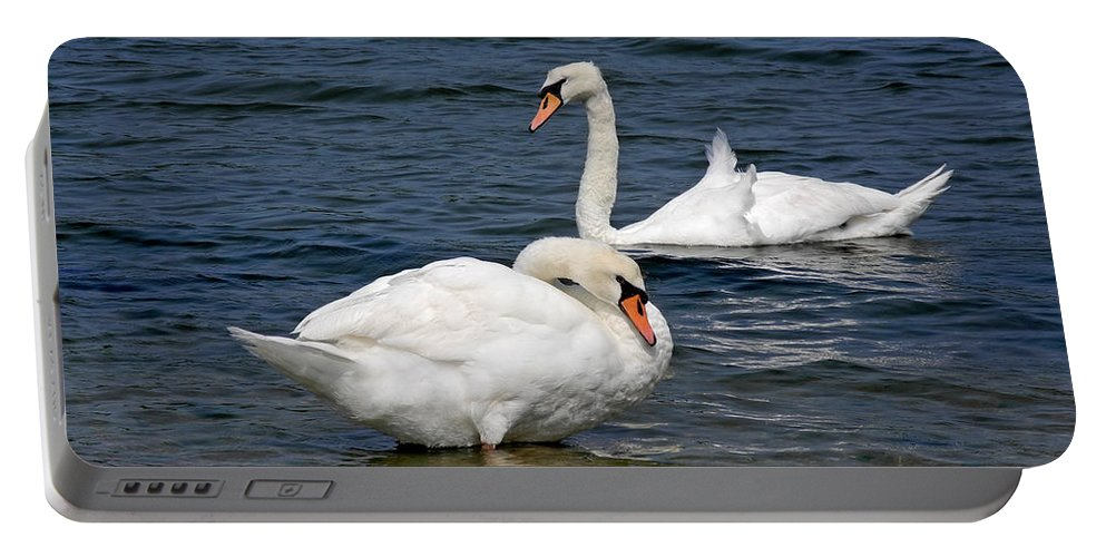 Swan Portable Battery Charger featuring the photograph Bathing Beauties by Lynda Lehmann