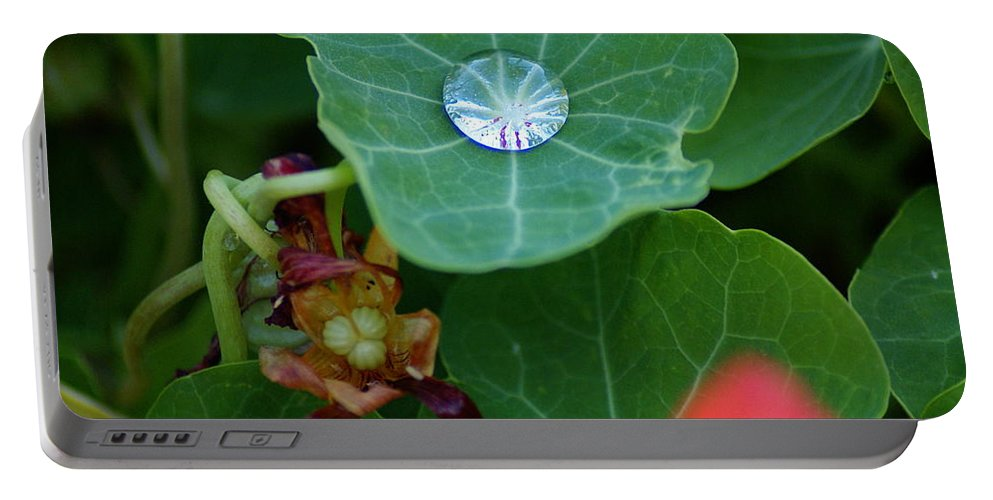 Water Portable Battery Charger featuring the photograph Beads Of Life by Ben Upham III
