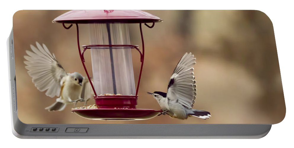 Birds Portable Battery Charger featuring the photograph Beautiful Birds by Linda Tiepelman