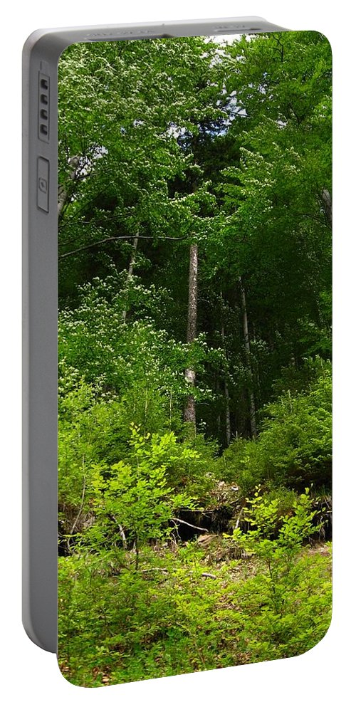 Forest Portable Battery Charger featuring the photograph Beautiful Green by Alina Cristina Frent