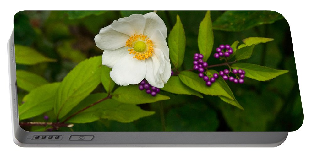 Callicarpa Portable Battery Charger featuring the photograph Beautyberry And Anemone 2 by Douglas Barnett