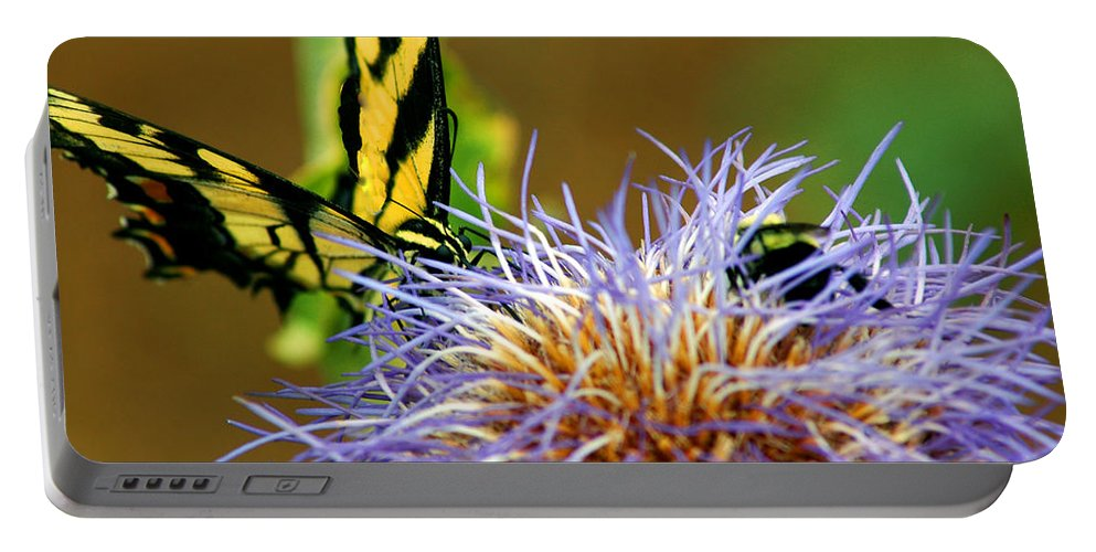 Usa Portable Battery Charger featuring the photograph Bee And The Butterfly by LeeAnn McLaneGoetz McLaneGoetzStudioLLCcom