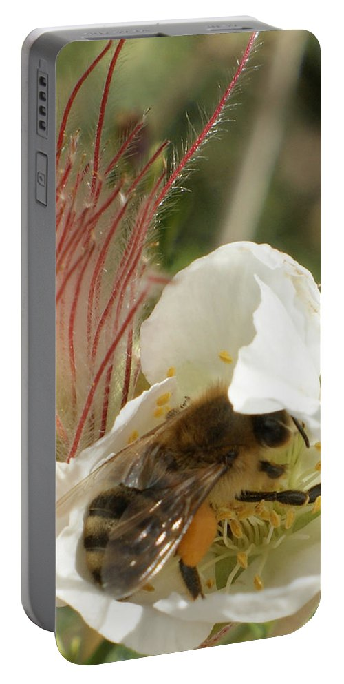 Bee Portable Battery Charger featuring the photograph Bee Break by Ernie Echols