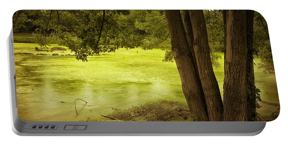 Lake Portable Battery Charger featuring the photograph Bent Twig 5 by Madeline Ellis