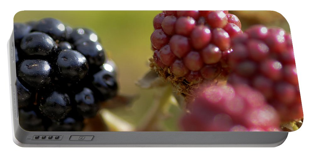 Berries Portable Battery Charger featuring the photograph Berries by Pedro Cardona Llambias