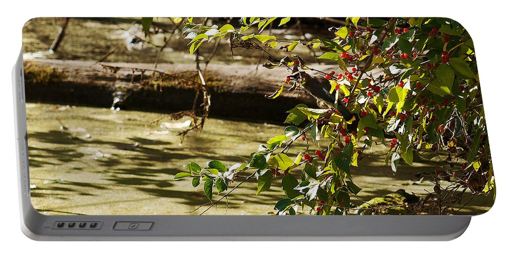 Cedar Waxwing Portable Battery Charger featuring the photograph Berry Picker by Edward Peterson