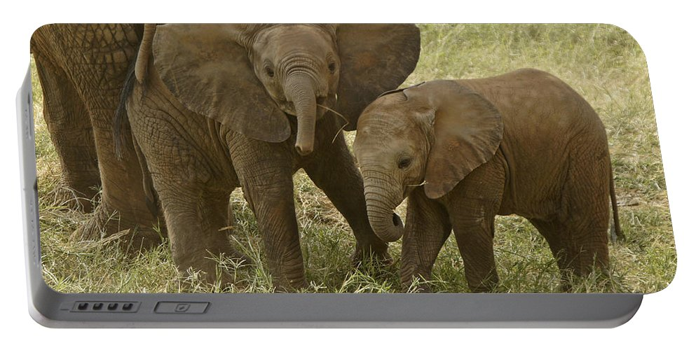 Africa Portable Battery Charger featuring the photograph Best Buddies by Michele Burgess