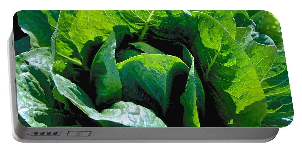 Green Portable Battery Charger featuring the photograph Big Green Cabbage by Eric Tressler