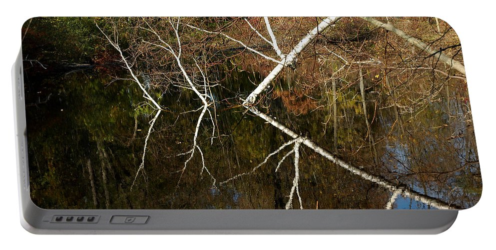 Usa Portable Battery Charger featuring the photograph Birch Lake Reflections by LeeAnn McLaneGoetz McLaneGoetzStudioLLCcom