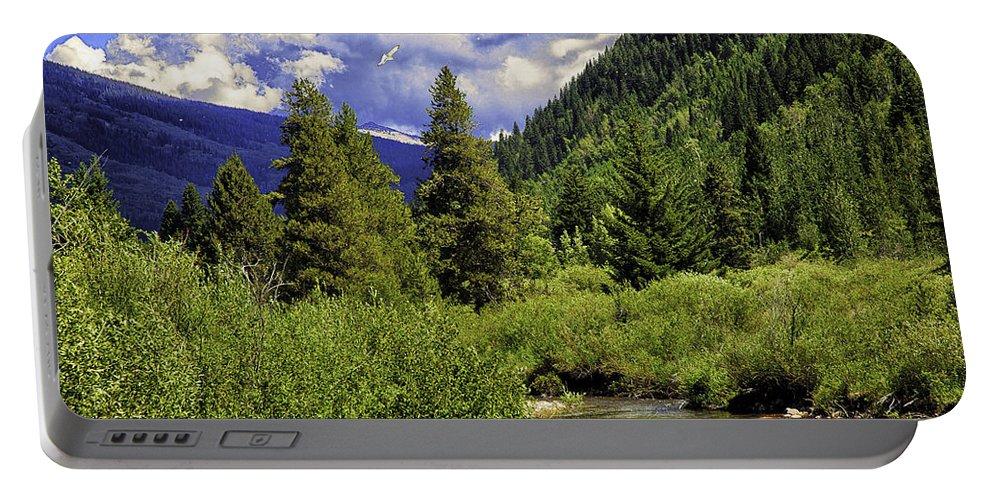 Vail Portable Battery Charger featuring the photograph Bird Over Vail 2 by Madeline Ellis