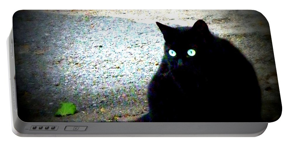 Cat Portable Battery Charger featuring the photograph Black Cat Beauty by Lainie Wrightson