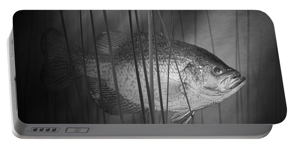 Art Portable Battery Charger featuring the photograph Black Crappie Or Speckled Bass Among The Reeds by Randall Nyhof