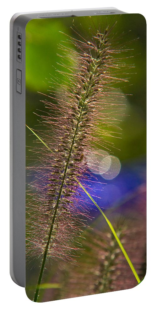 Black Portable Battery Charger featuring the photograph Black Foxtail by Douglas Barnett