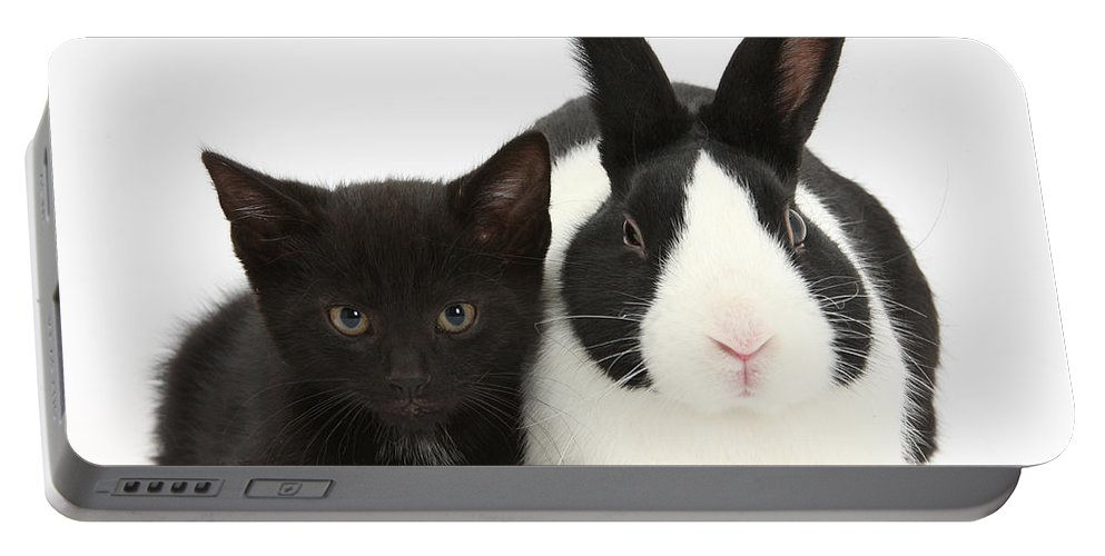 Nature Portable Battery Charger featuring the photograph Black Kitten Dutch Rabbit by Mark Taylor