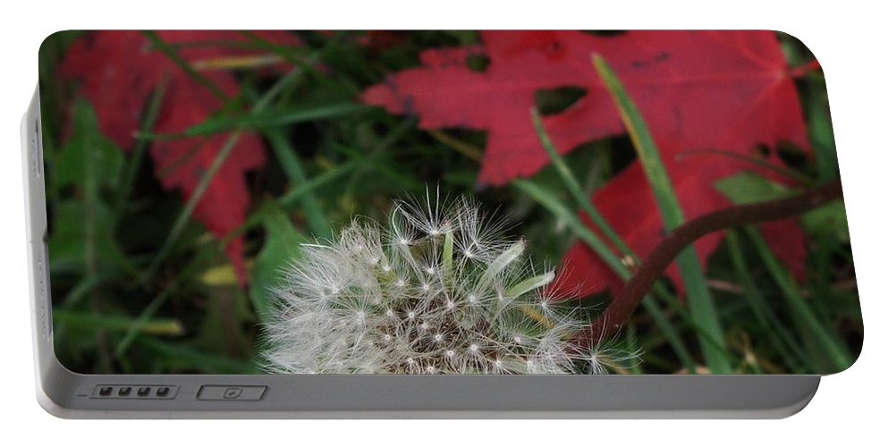 Dandelion Portable Battery Charger featuring the photograph Blow Away by Ian MacDonald