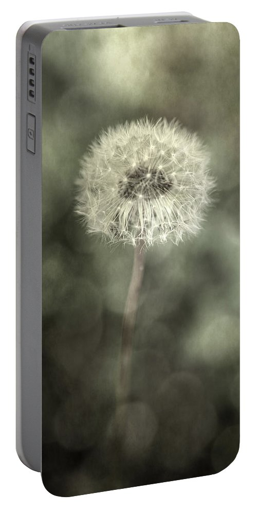 Blowball Portable Battery Charger featuring the photograph Blowball by Joana Kruse