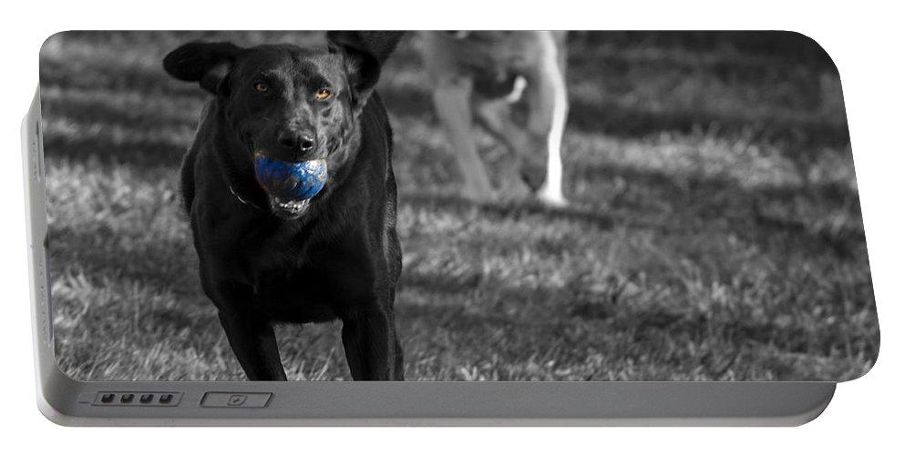 Dog Portable Battery Charger featuring the photograph Blue Ball by Jean Noren
