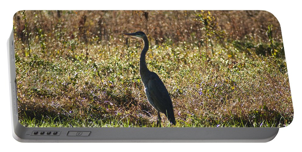 Blue Heron At Valley Forge Portable Battery Charger featuring the photograph Blue Heron At Valley Forge by Bill Cannon