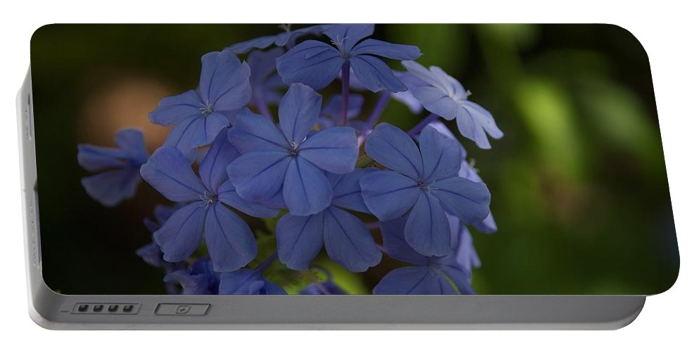 Florida Portable Battery Charger featuring the photograph Blue by Joseph Yarbrough