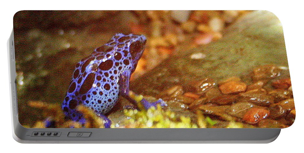 Blue Poison Dart Frog Portable Battery Charger featuring the photograph Blue Poison Dart Frog by Laurel Talabere